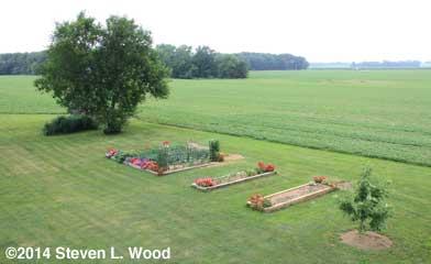 The Senior Garden - June 30, 2014